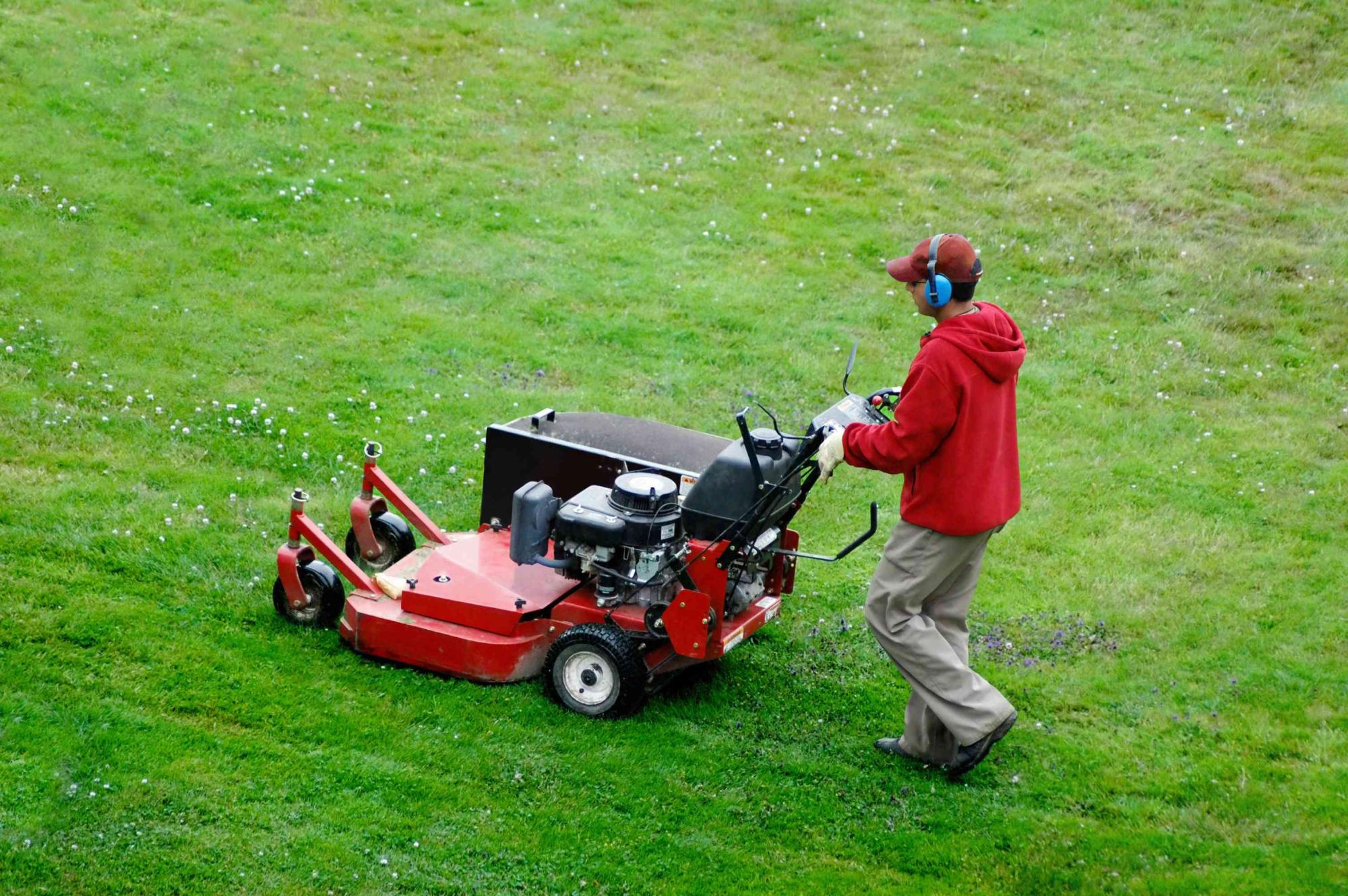 Lawn Care Maintenance – What Do You Need To Know - ITDay Mississippi