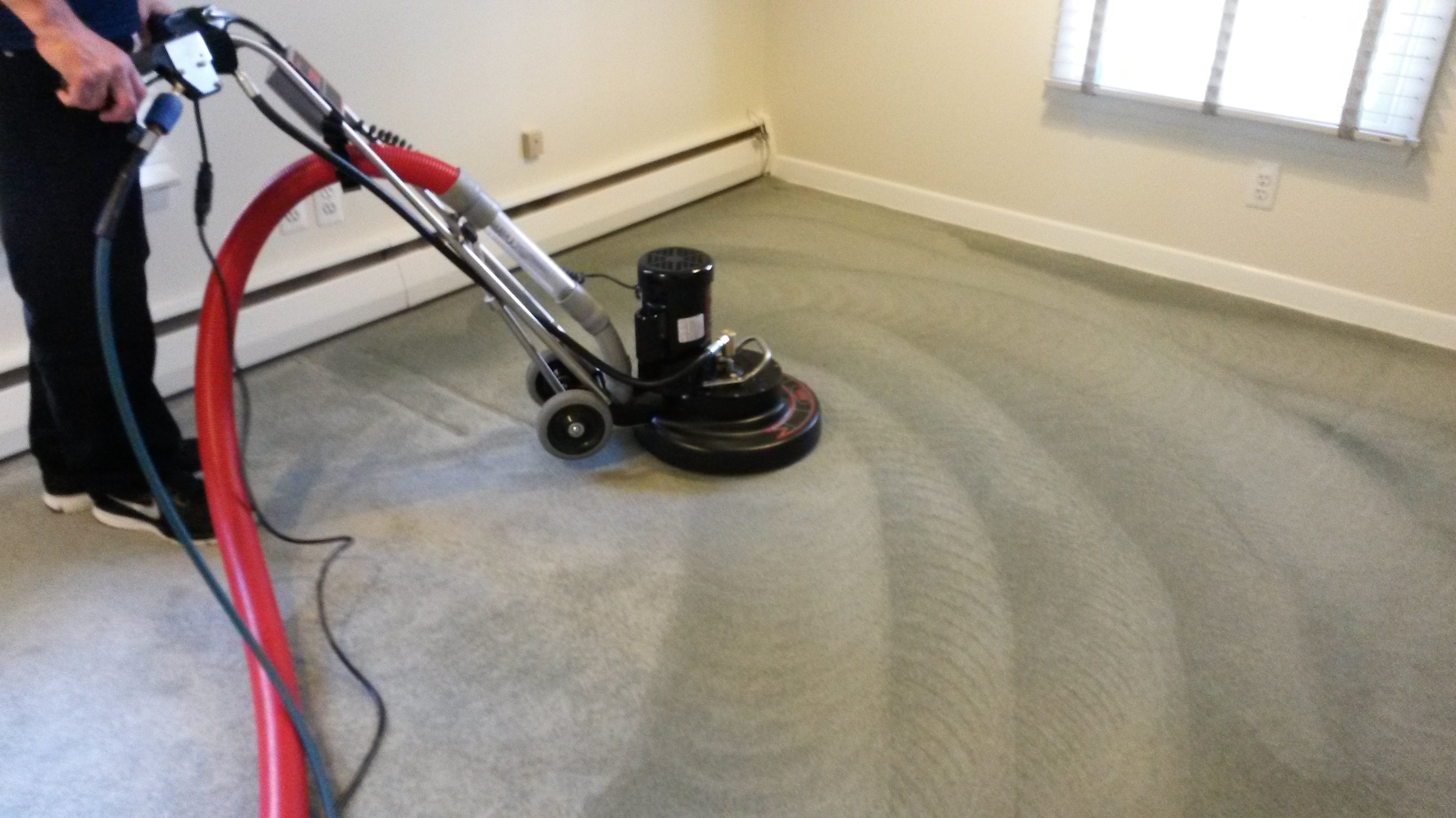 Reasons to pick up a Rug Cleaning Company Toronto - ITDay Mississippi